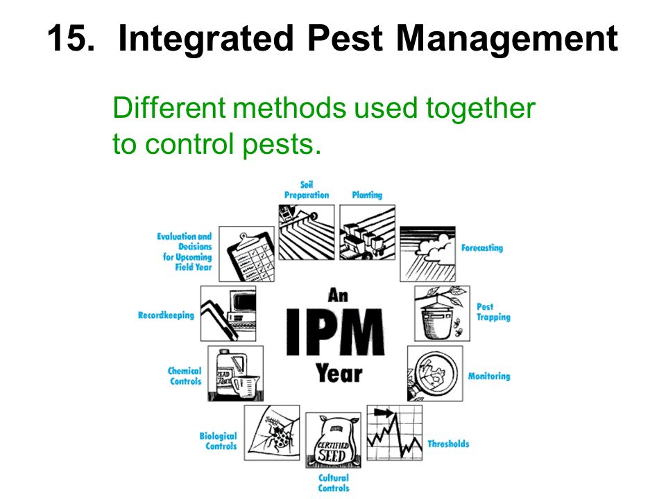 Different methods used together to control pests. 15. Integrated Pest Management