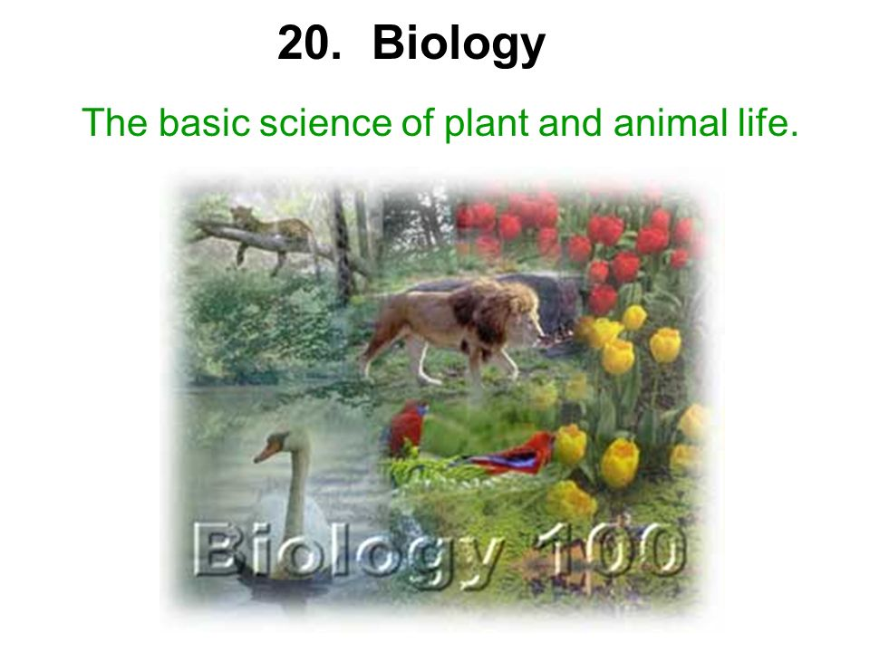 The basic science of plant and animal life. 20. Biology