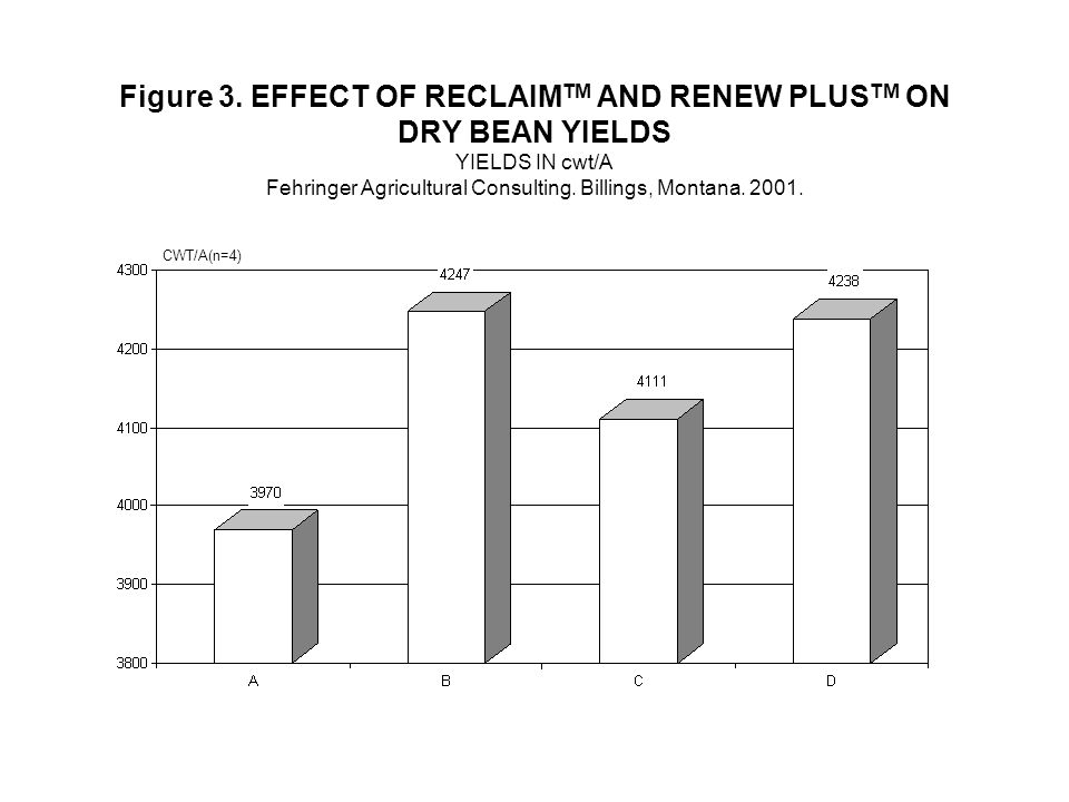 Figure 3. EFFECT OF RECLAIM TM AND RENEW PLUS TM ON DRY BEAN YIELDS YIELDS IN cwt/A Fehringer Agricultural Consulting. Billings, Montana. 2001. CWT/A(