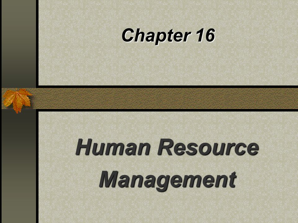 Chapter 16 Human Resource Management