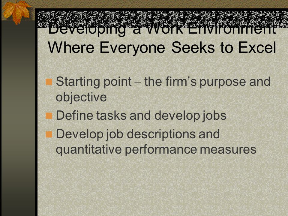 Developing a Work Environment Where Everyone Seeks to Excel Starting point – the firms purpose and objective Define tasks and develop jobs Develop job