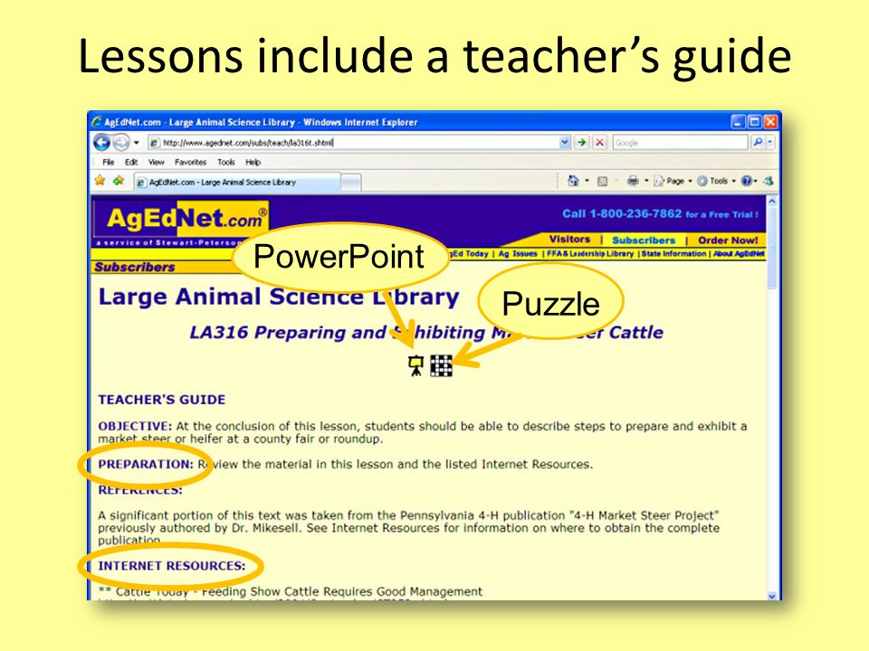 Lessons include a teachers guide PowerPoint Puzzle