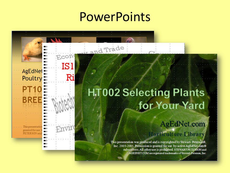 PowerPoints
