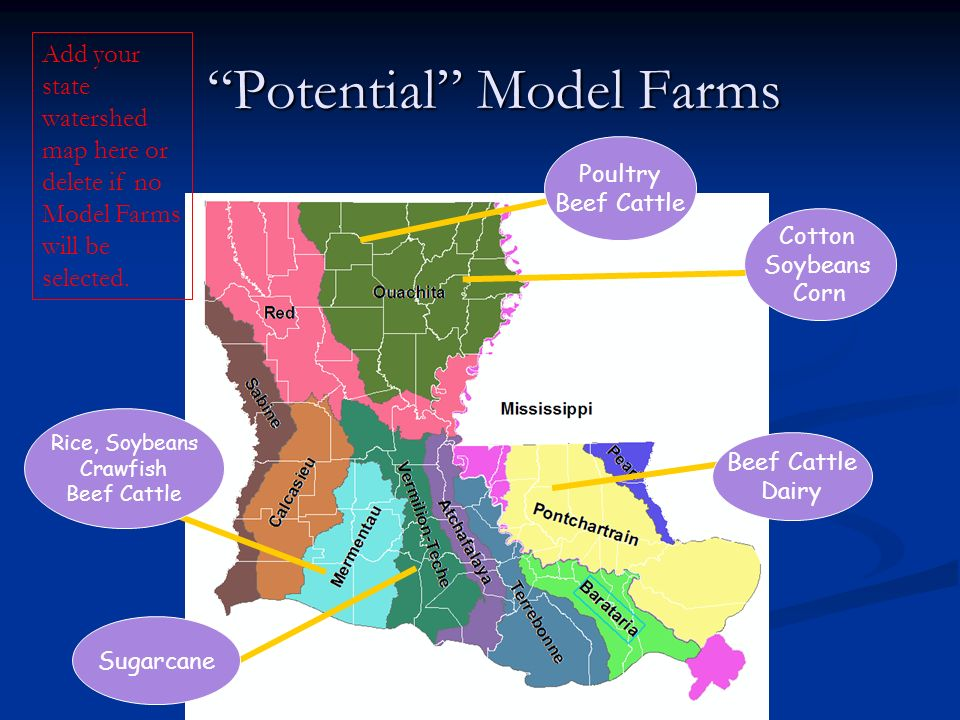 Potential Model Farms Potential Model Farms Cotton Soybeans Corn Sugarcane Rice, Soybeans Crawfish Beef Cattle Poultry Beef Cattle Dairy Add your stat