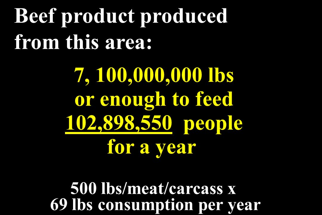 7, 100,000,000 lbs or enough to feed 102,898,550 people for a year 7, 100,000,000 lbs or enough to feed 102,898,550 people for a year 500 lbs/meat/car