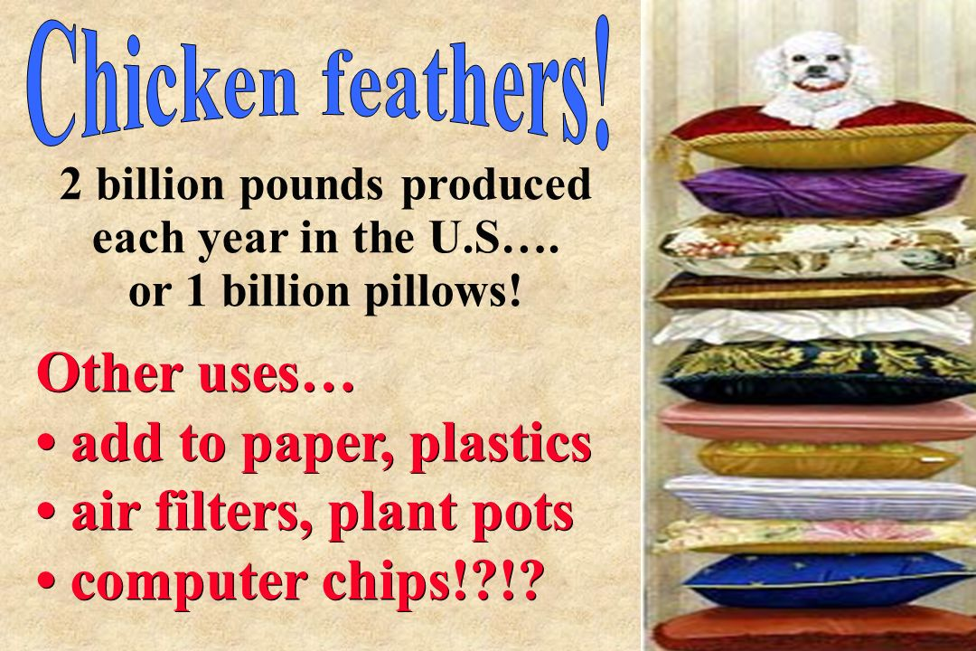 Other uses… add to paper, plastics air filters, plant pots computer chips!?!? Other uses… add to paper, plastics air filters, plant pots computer chip
