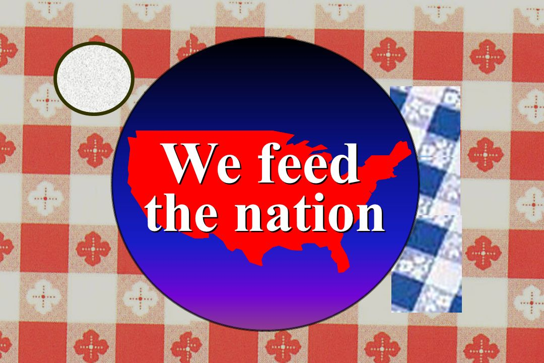 We feed the nation We feed the nation
