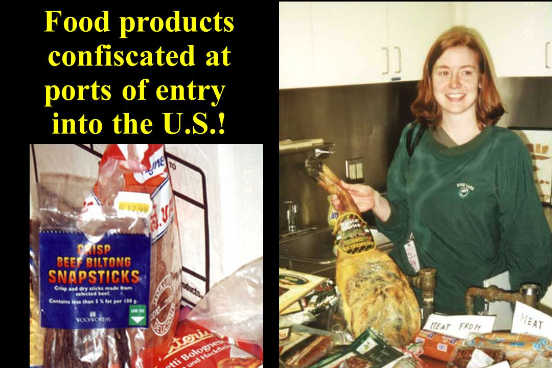 Food products confiscated at ports of entry into the U.S.!