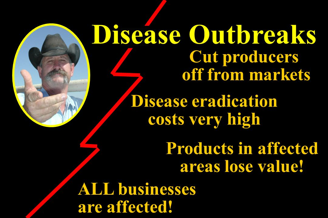 Disease Outbreaks Cut producers off from markets Products in affected areas lose value! ALL businesses are affected! Disease eradication costs very hi