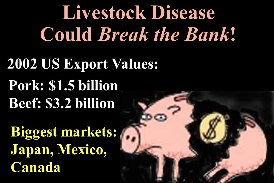 Livestock Disease Could Break the Bank! 2002 US Export Values: Pork: $1.5 billion Beef: $3.2 billion Biggest markets: Japan, Mexico, Canada