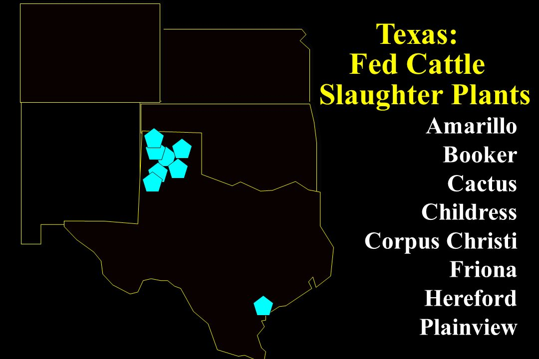 Texas: Fed Cattle Slaughter Plants Amarillo Booker Cactus Childress Corpus Christi Friona Hereford Plainview