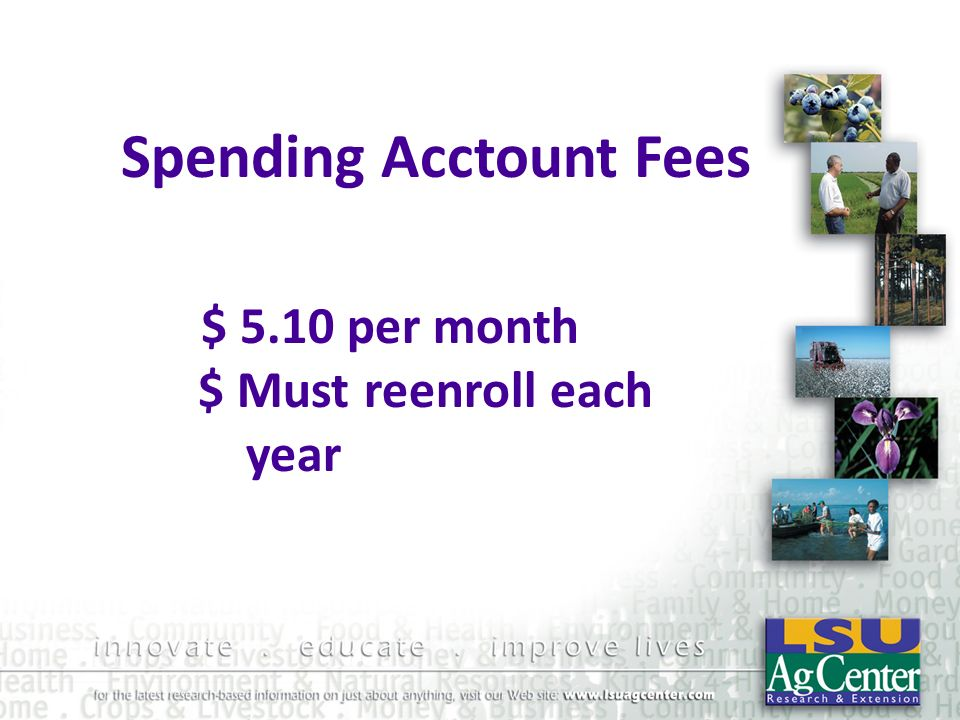 Spending Acctount Fees $ 5.10 per month $ Must reenroll each year