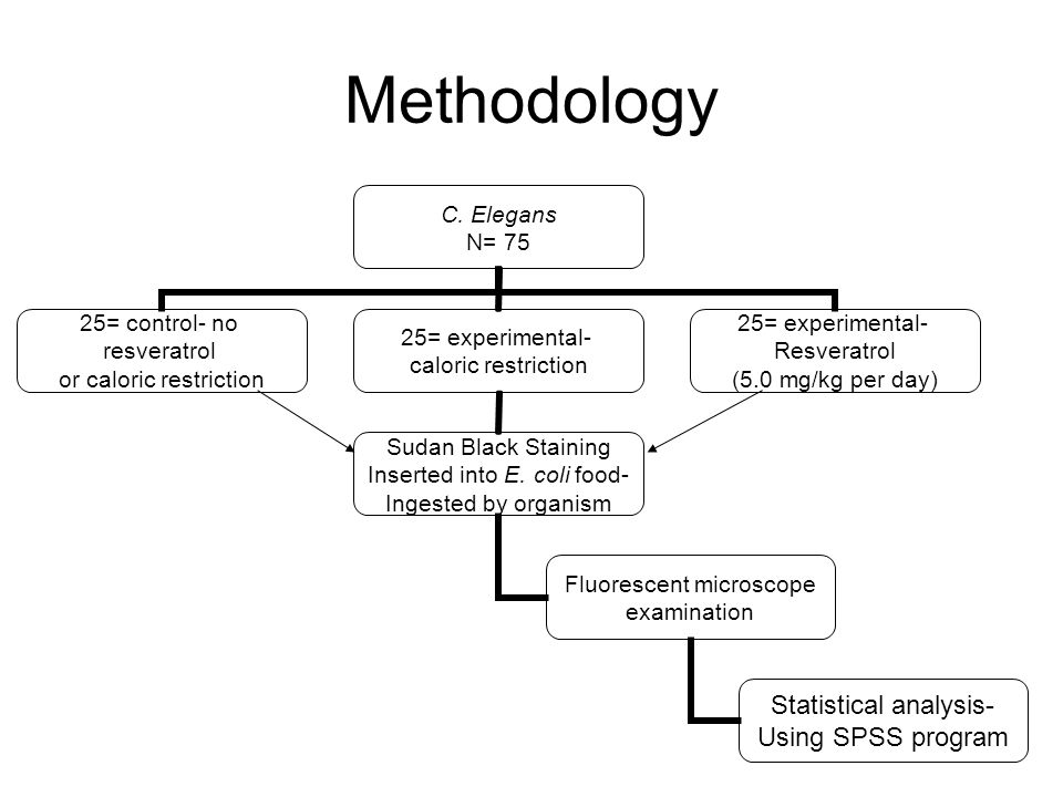 Methodology C.
