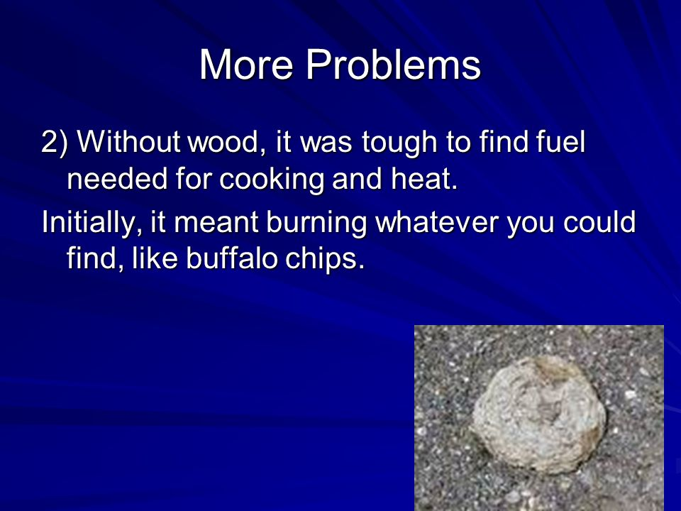 More Problems 2) Without wood, it was tough to find fuel needed for cooking and heat.