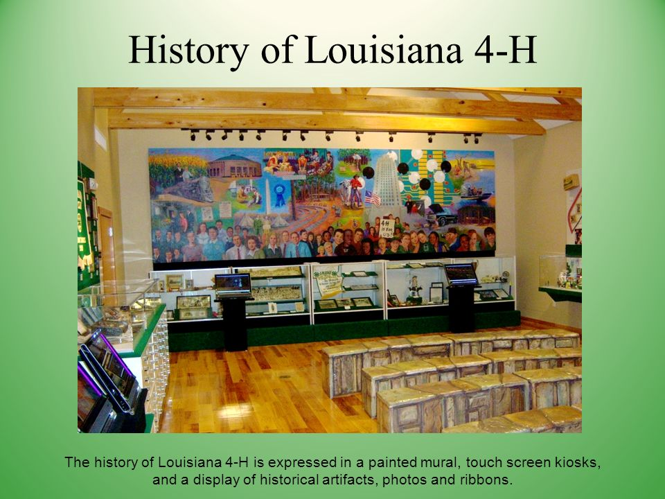 History of Louisiana 4-H The history of Louisiana 4-H is expressed in a painted mural, touch screen kiosks, and a display of historical artifacts, photos and ribbons.