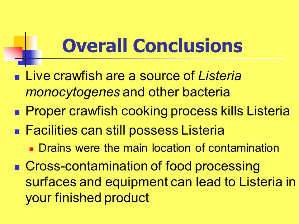 Overall Conclusions Live crawfish are a source of Listeria monocytogenes and other bacteria Proper crawfish cooking process kills Listeria Facilities