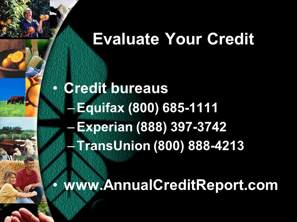 Evaluate Your Credit Credit bureaus –Equifax (800) 685-1111 –Experian (888) 397-3742 –TransUnion (800) 888-4213 www.AnnualCreditReport.com