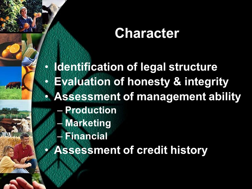 Character Identification of legal structure Evaluation of honesty & integrity Assessment of management ability –Production –Marketing –Financial Assessment of credit history
