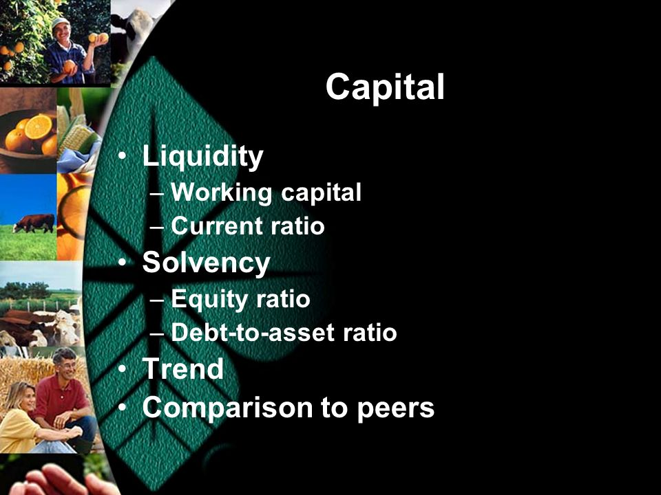 Capital Liquidity –Working capital –Current ratio Solvency –Equity ratio –Debt-to-asset ratio Trend Comparison to peers