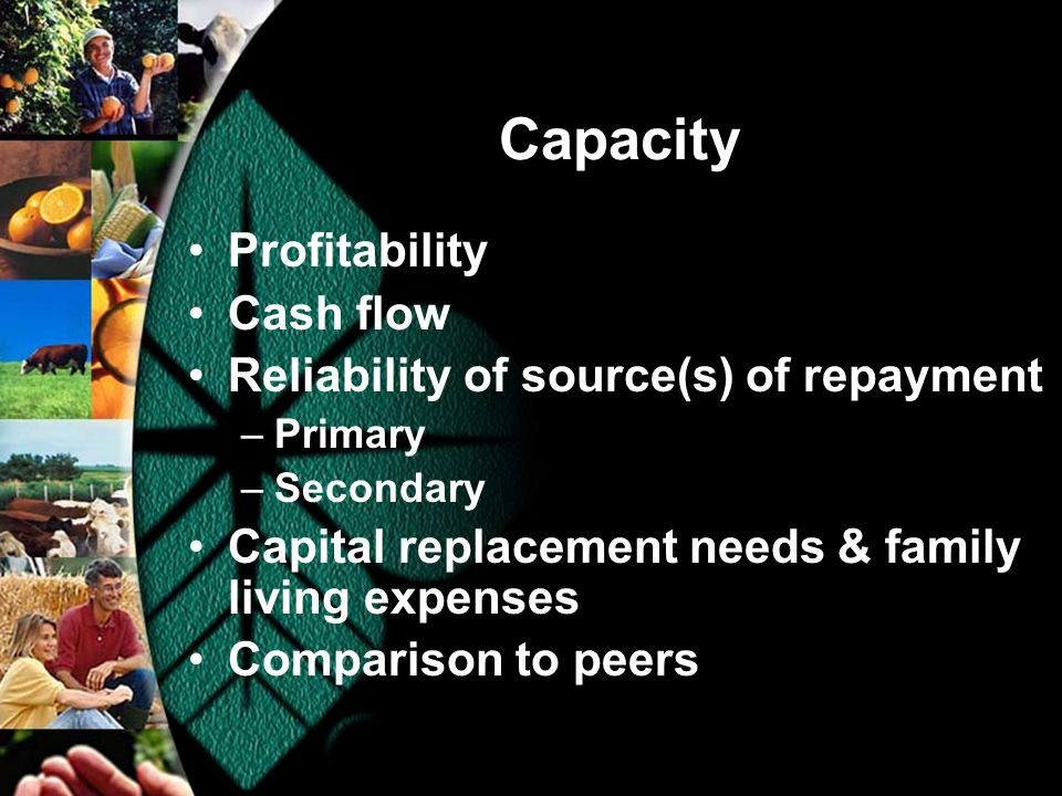 Capacity Profitability Cash flow Reliability of source(s) of repayment –Primary –Secondary Capital replacement needs & family living expenses Comparison to peers