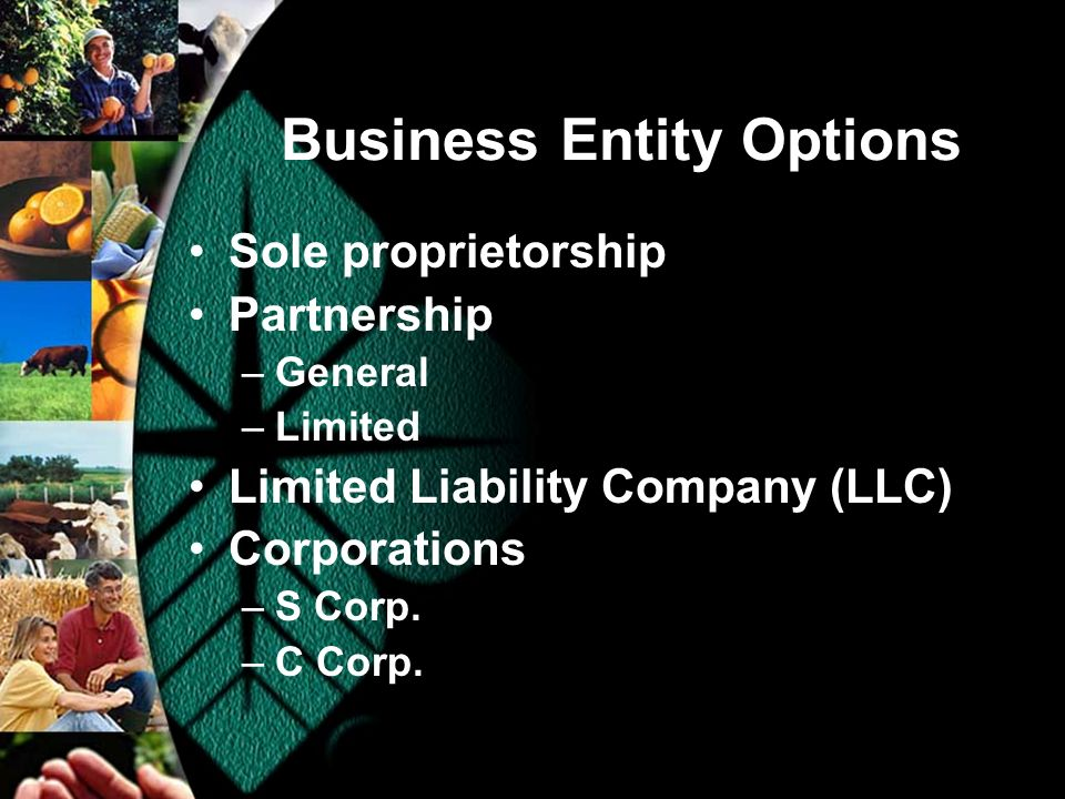Business Entity Options Sole proprietorship Partnership –General –Limited Limited Liability Company (LLC) Corporations –S Corp.