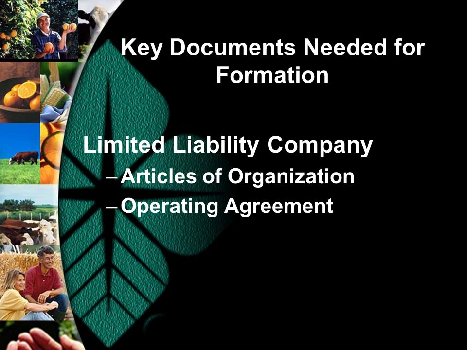 Key Documents Needed for Formation Limited Liability Company –Articles of Organization –Operating Agreement
