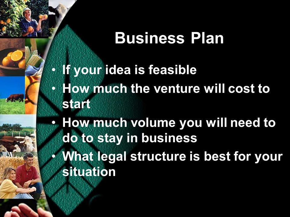 Business Plan If your idea is feasible How much the venture will cost to start How much volume you will need to do to stay in business What legal structure is best for your situation