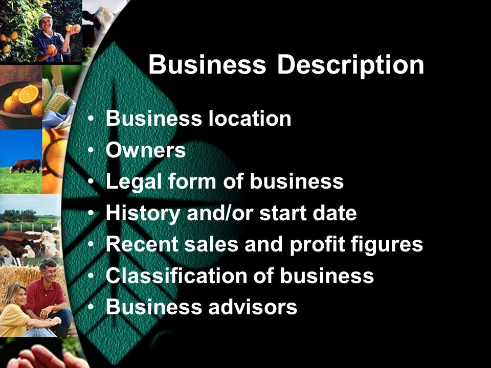 Business Description Business location Owners Legal form of business History and/or start date Recent sales and profit figures Classification of business Business advisors