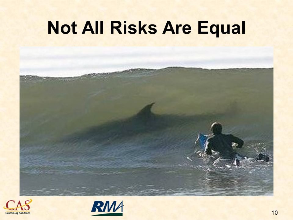 10 Not All Risks Are Equal