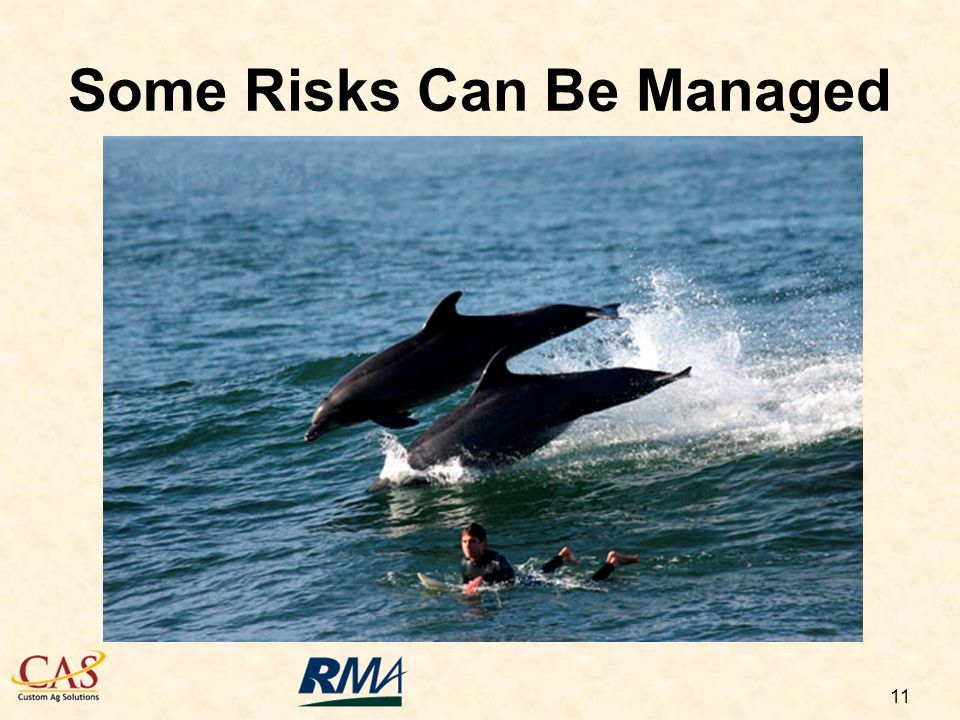 11 Some Risks Can Be Managed