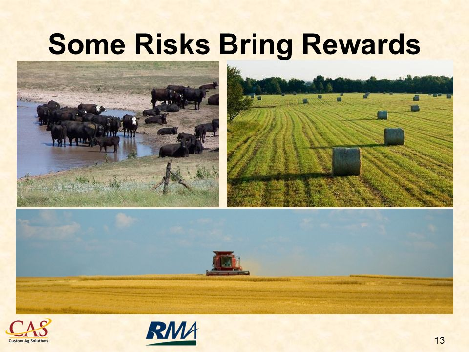 13 Some Risks Bring Rewards