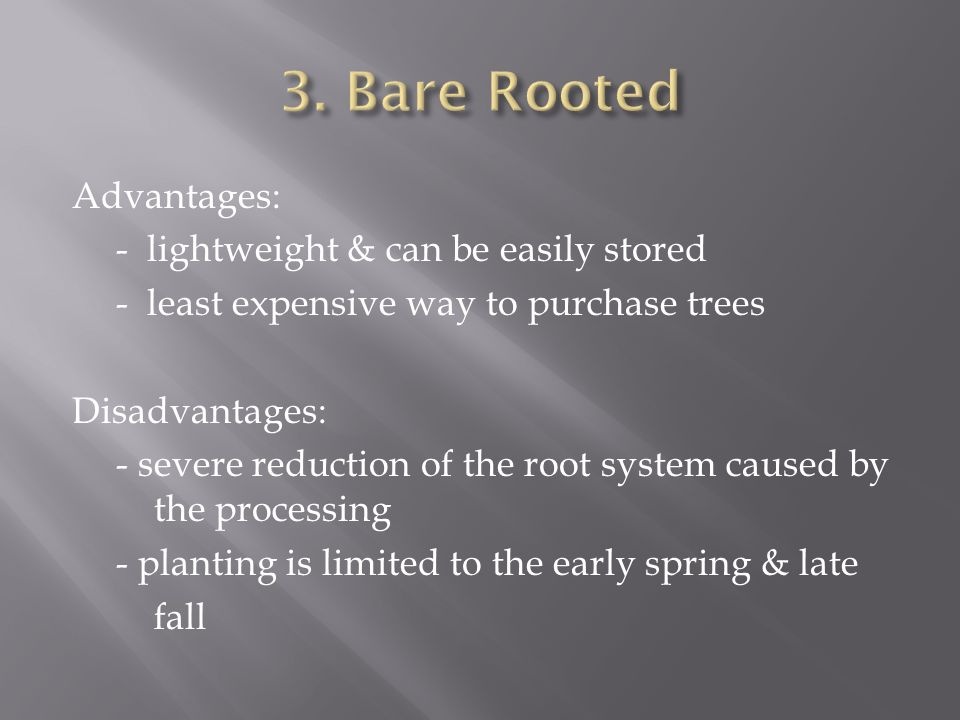 Advantages: - lightweight & can be easily stored - least expensive way to purchase trees Disadvantages: - severe reduction of the root system caused by the processing - planting is limited to the early spring & late fall