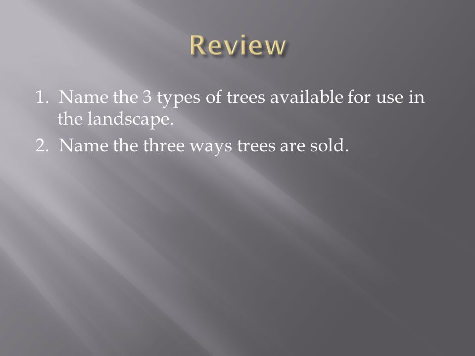 1. Name the 3 types of trees available for use in the landscape.