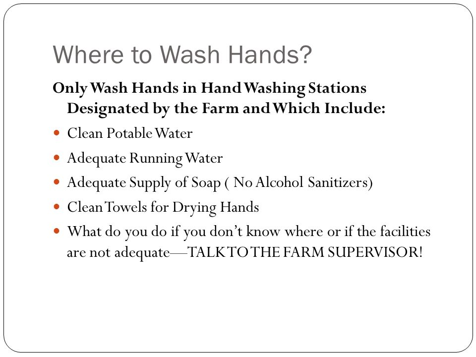 Where to Wash Hands? Only Wash Hands in Hand Washing Stations Designated by the Farm and Which Include: Clean Potable Water Adequate Running Water Ade