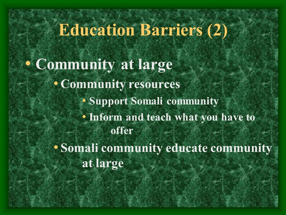 Education Barriers (2) Community at large Community resources Support Somali community Inform and teach what you have to offer Somali community educate community at large