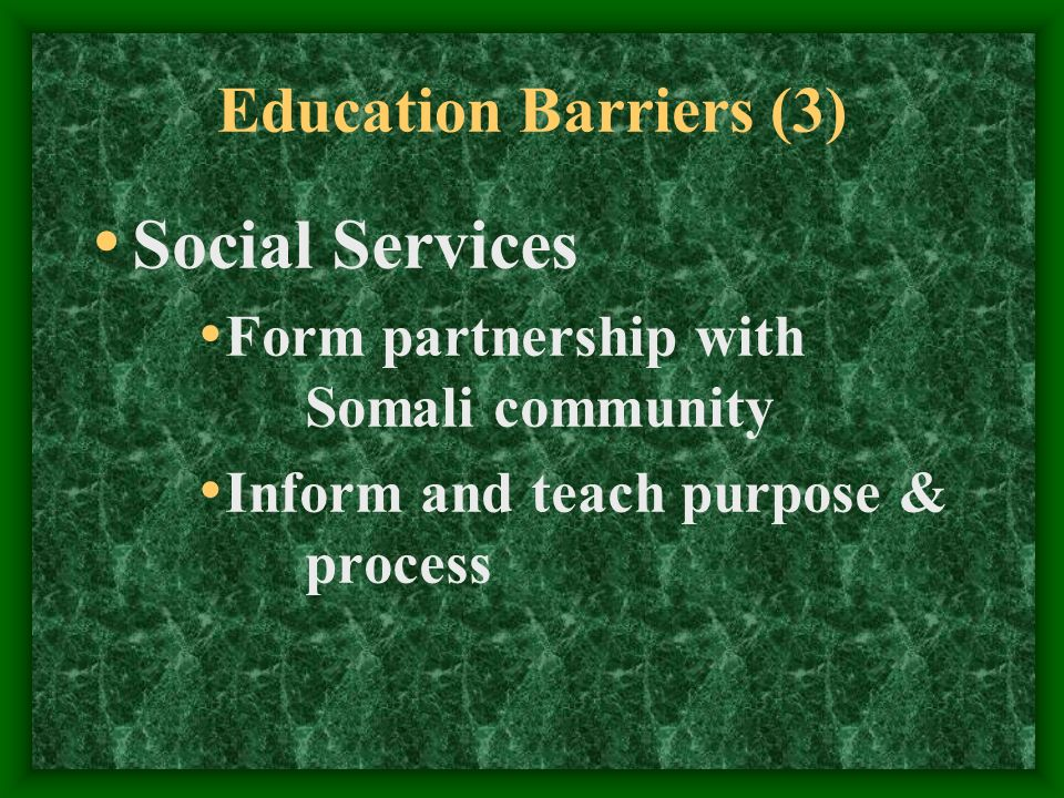 Education Barriers (3) Social Services Form partnership with Somali community Inform and teach purpose & process