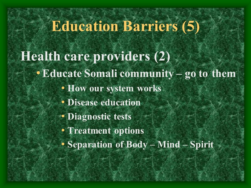 Education Barriers (5) Health care providers (2) Educate Somali community – go to them How our system works Disease education Diagnostic tests Treatme