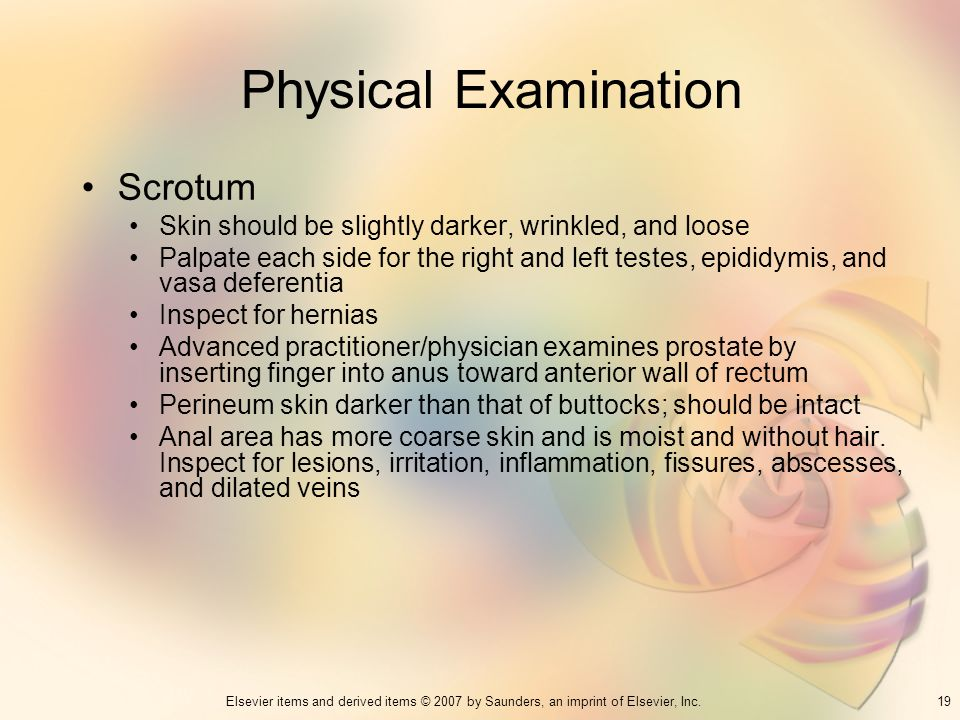 19Elsevier items and derived items © 2007 by Saunders, an imprint of Elsevier, Inc. Physical Examination Scrotum Skin should be slightly darker, wrink