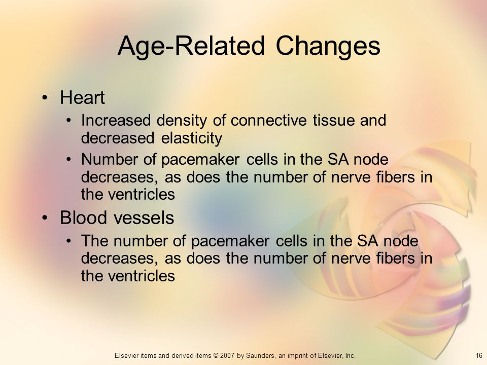 16Elsevier items and derived items © 2007 by Saunders, an imprint of Elsevier, Inc. Age-Related Changes Heart Increased density of connective tissue a