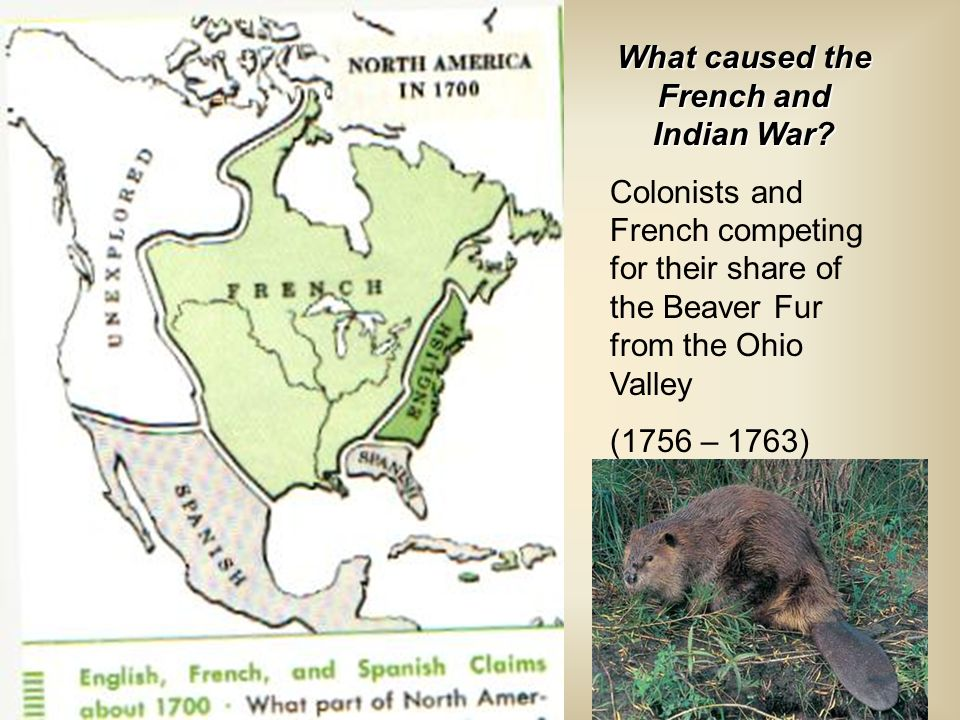 What caused the French and Indian War? Colonists and French competing for their share of the Beaver Fur from the Ohio Valley (1756 – 1763)