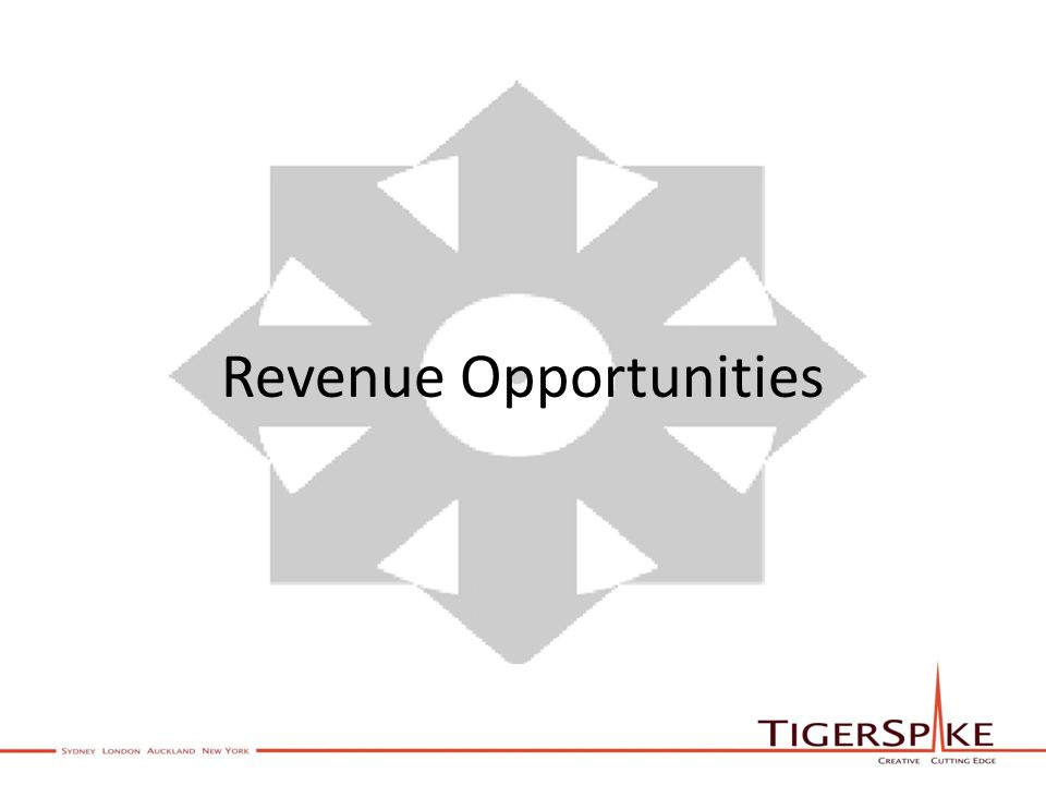 Revenue Opportunities