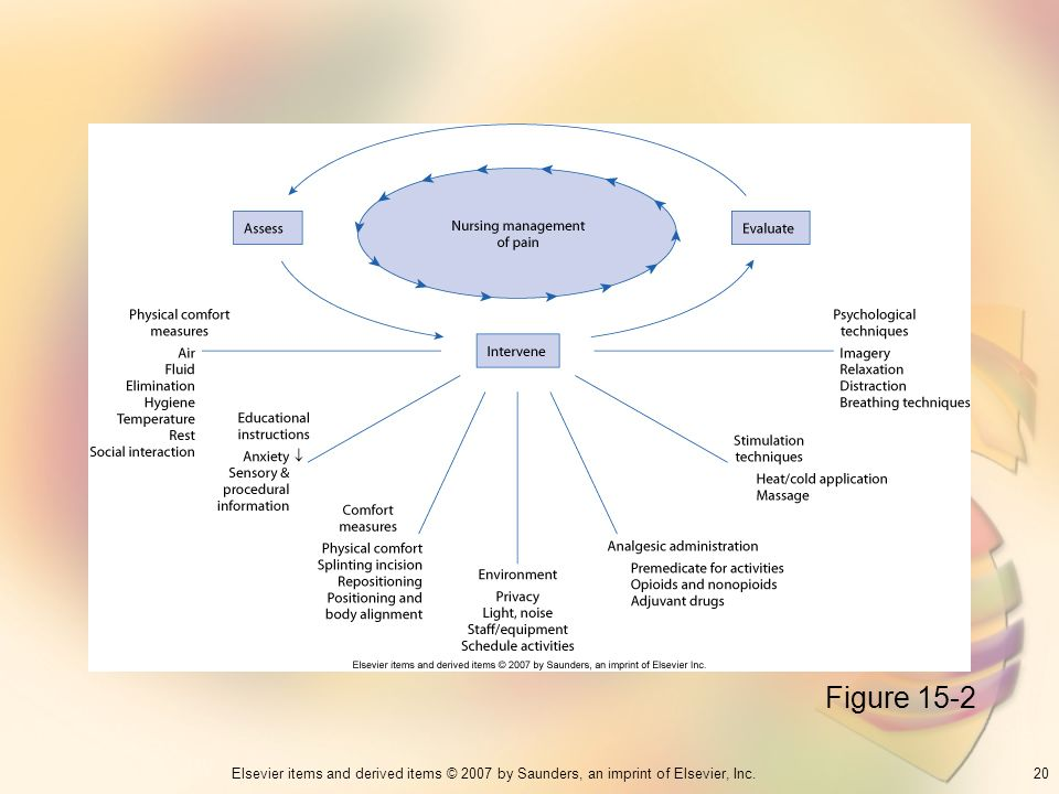 20Elsevier items and derived items © 2007 by Saunders, an imprint of Elsevier, Inc. Figure 15-2