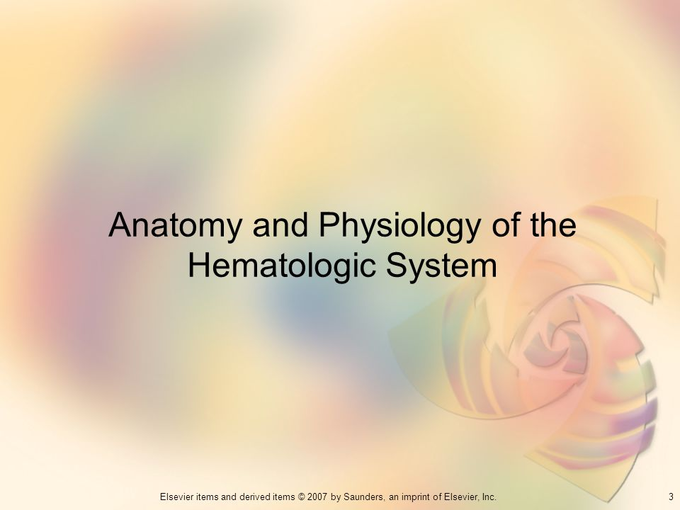 3Elsevier items and derived items © 2007 by Saunders, an imprint of Elsevier, Inc. Anatomy and Physiology of the Hematologic System