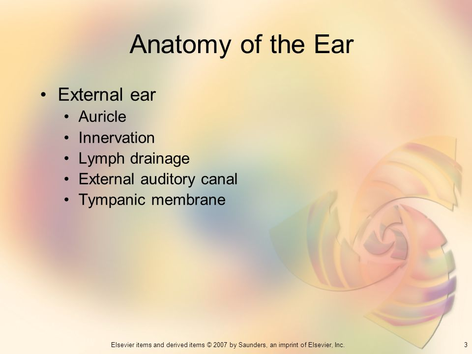 3Elsevier items and derived items © 2007 by Saunders, an imprint of Elsevier, Inc. Anatomy of the Ear External ear Auricle Innervation Lymph drainage
