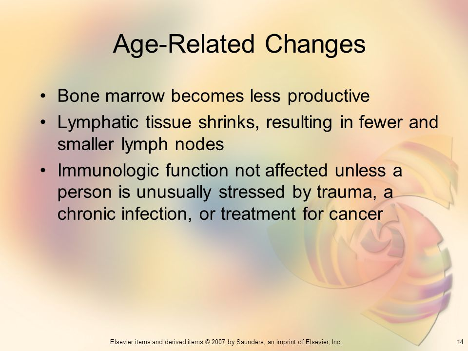14Elsevier items and derived items © 2007 by Saunders, an imprint of Elsevier, Inc. Age-Related Changes Bone marrow becomes less productive Lymphatic