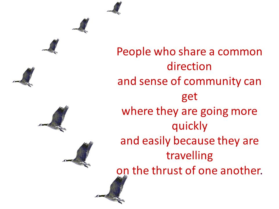 People who share a common direction and sense of community can get where they are going more quickly and easily because they are travelling on the thrust of one another.