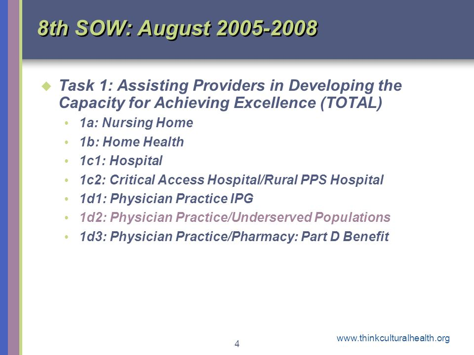 4 8th SOW: August 2005-2008 Task 1: Assisting Providers in Developing the Capacity for Achieving Excellence (TOTAL) 1a: Nursing Home 1b: Home Health 1