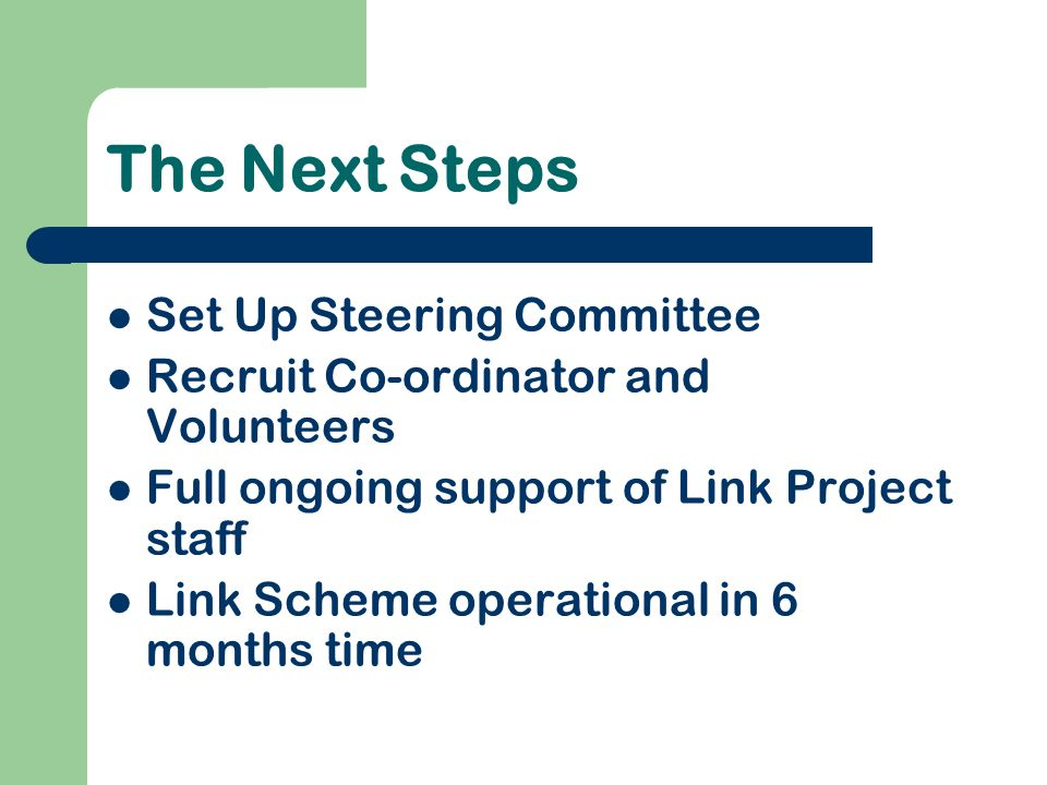 The Next Steps Set Up Steering Committee Recruit Co-ordinator and Volunteers Full ongoing support of Link Project staff Link Scheme operational in 6 months time