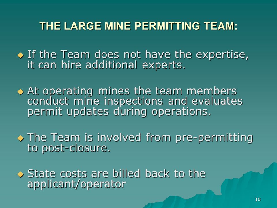 10 THE LARGE MINE PERMITTING TEAM: If the Team does not have the expertise, it can hire additional experts.