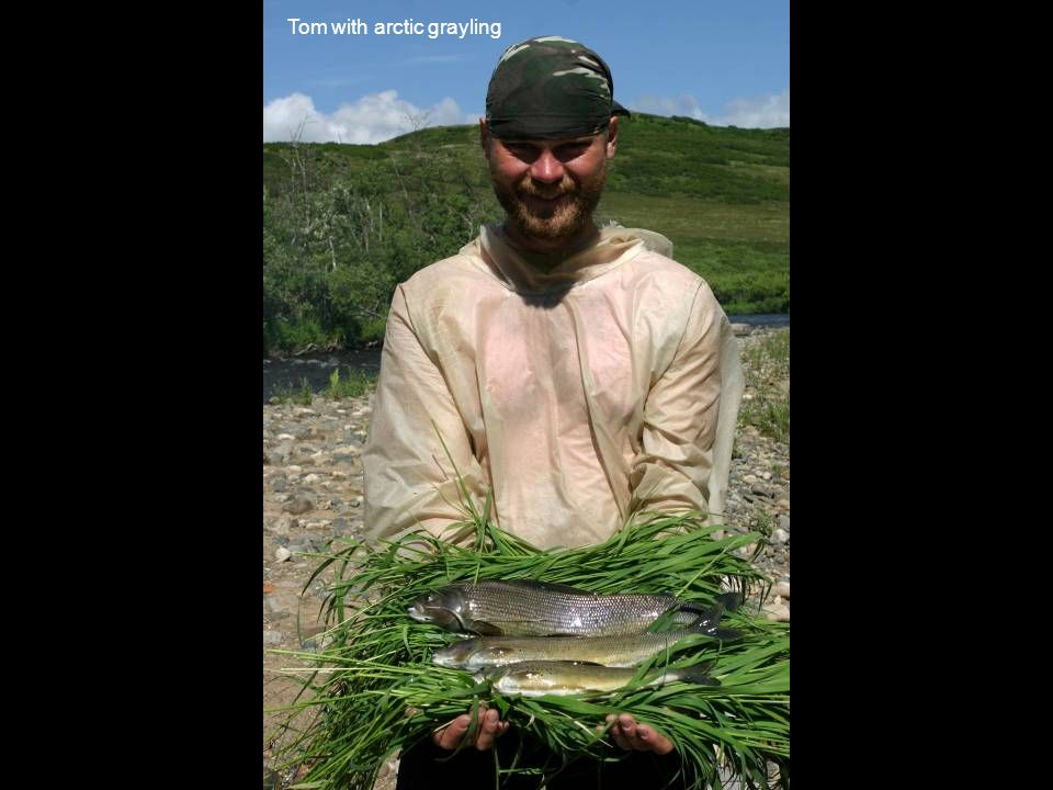 Tom with arctic grayling